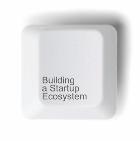 comportamientos para desarrollar un ecosistema empresarial