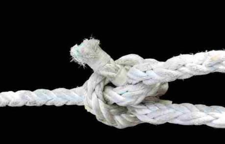 cómo potenciar la fortaleza de tu empresa